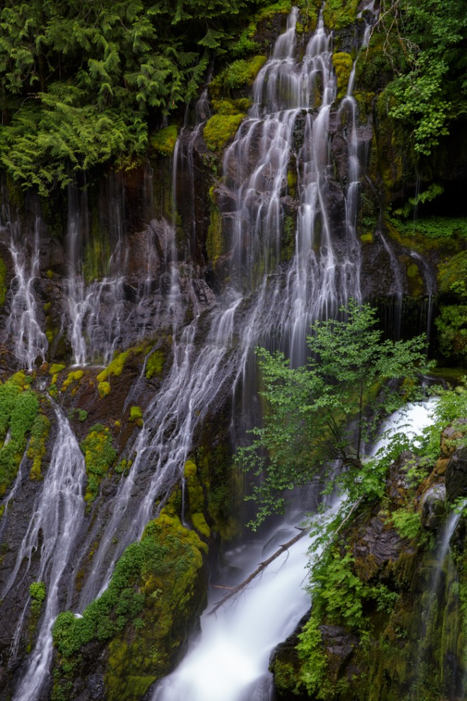 2013_06_15_173057_Panther Creek Falls WA_0118