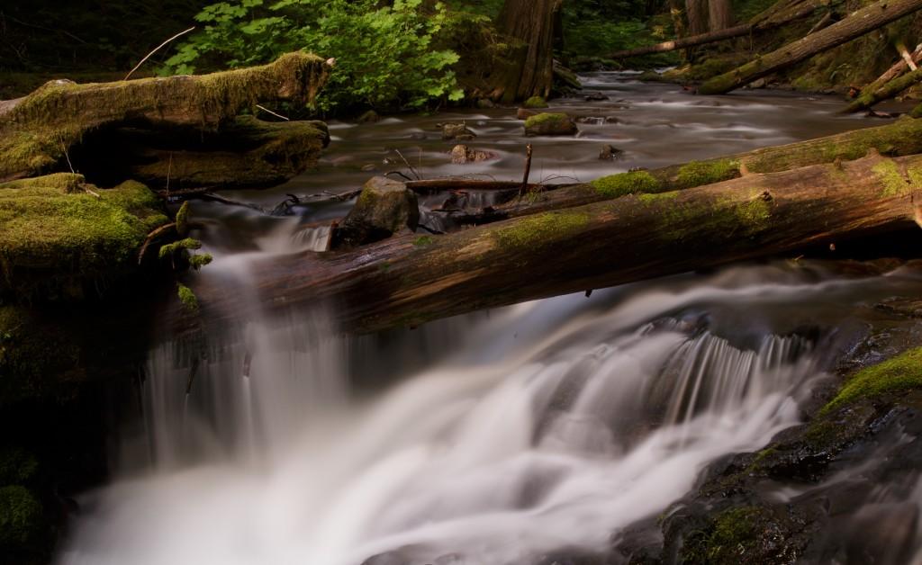 2013_06_15_173825_Panther Creek Falls WA_0127
