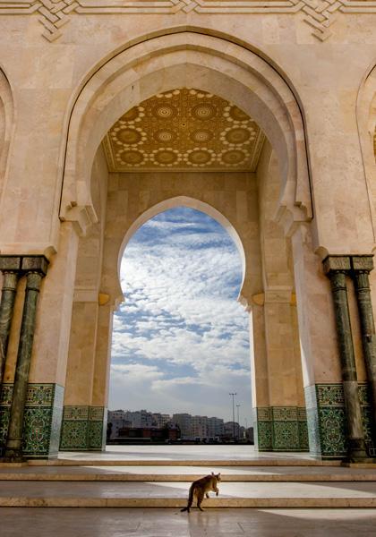Casablanca-328-Edit