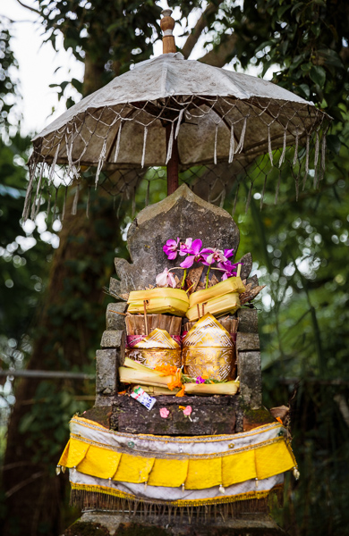 2014_02_27_000040_Bali Indonesia_0302