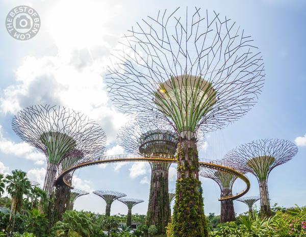 2014_03_26_201511_Singapore_0016-Edit