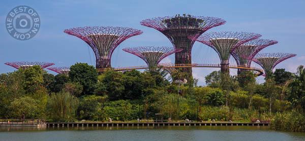 2014_03_27_002719_Singapore_0288