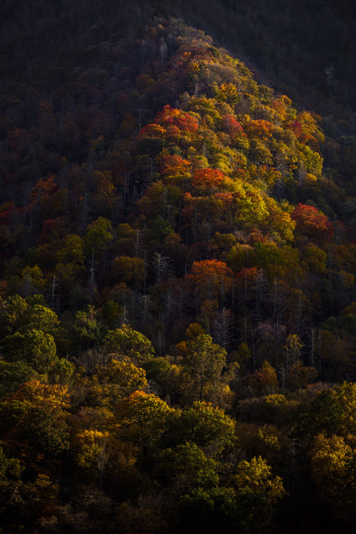 2013_10_29_140853_Great Smoky Mountains_0060-2