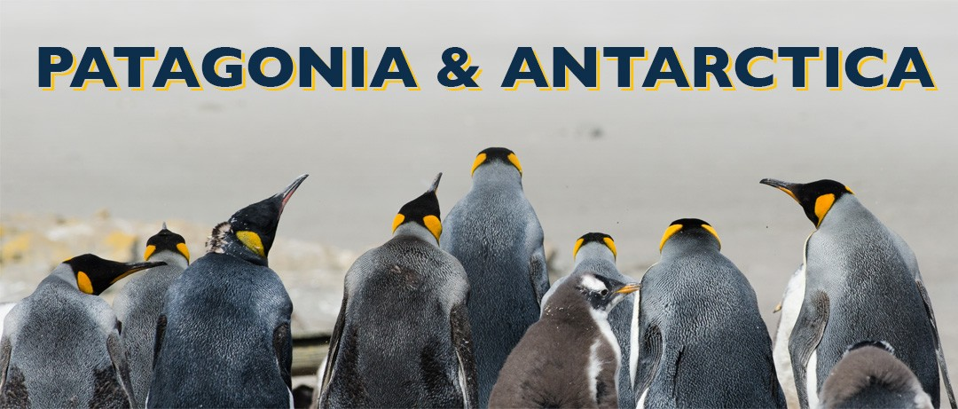 Patagonia & Antarctica: Part 1